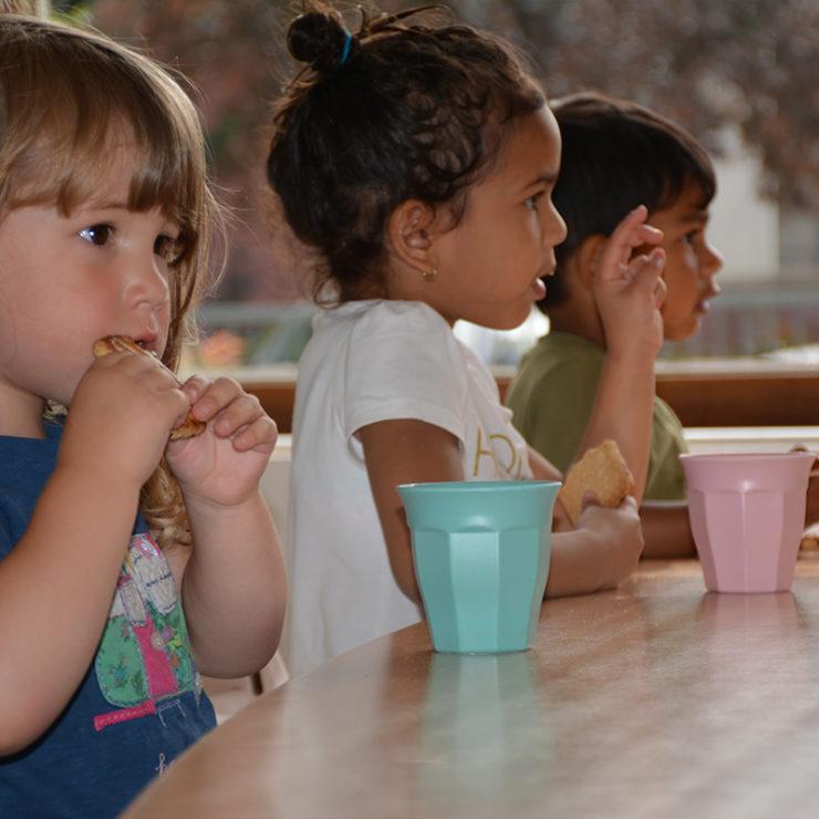 De Toverboom – Kinderdagverblijf in Leiden